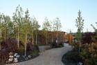 Wes Fleming's Chelsea-inspired garden