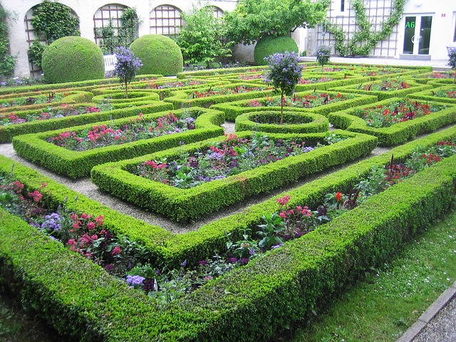 garden hedge maze with flowers