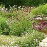Designing A Garden Around A Feature Element