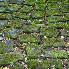 Benefits Of Opting For Natural Stone Pavers